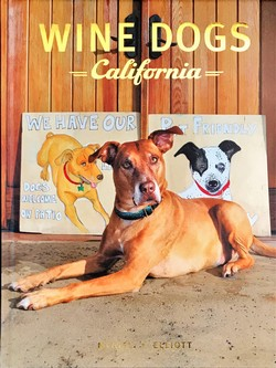 Wine Dogs California 3 Image